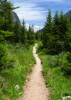 Go Hiking in Ouray This Summer'