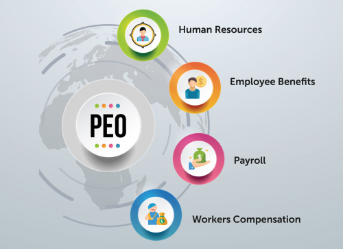 Professional Employer Organizations market'