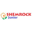 shemrockjunior- affordable nursery school in Paschim vihar'