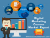 Digital Marketing Courses Market'