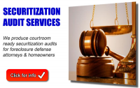 Paladin Securitization Auditors