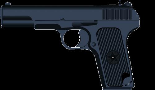 10mm ammo'