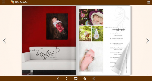 FlipBuilder Launches a Free Picture Book Maker'