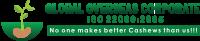 Global Overseas Corporate Logo