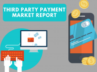 Third Party Payment Market