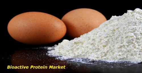 Bioactive Protein Market'