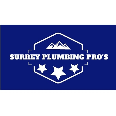 Company Logo For Surrey Plumbing Pro's'