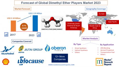 Forecast of Global Dimethyl Ether Players Market 2023'