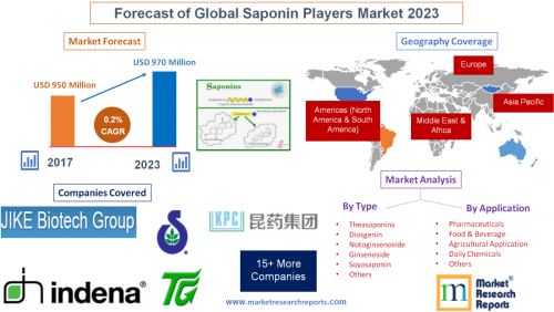 Forecast of Global Saponin Players Market 2023'