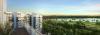 Skies Miltonia Penthouse View'