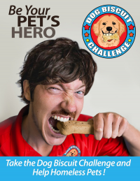 The Dog Biscuit Challenge