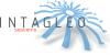Logo for Intagleo Systems'