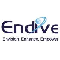 Endive Software Pvt Ltd Logo