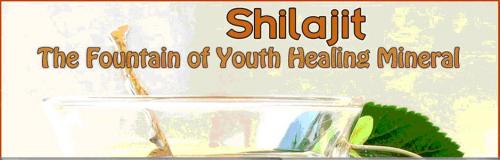 Shilajit'