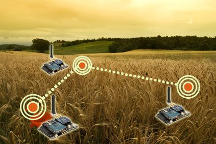 Agricultural Wireless Sensors'