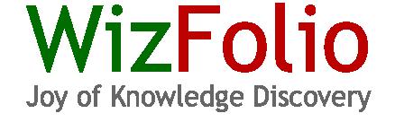 Logo for WizFolio'