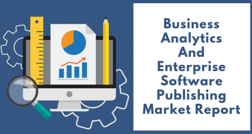 Business Analytics And Enterprise Software Publishing Market'