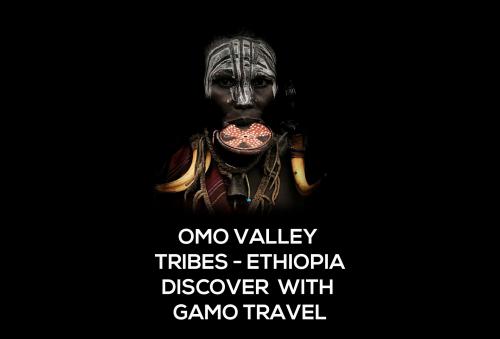 Company Logo For Gamo Travel'
