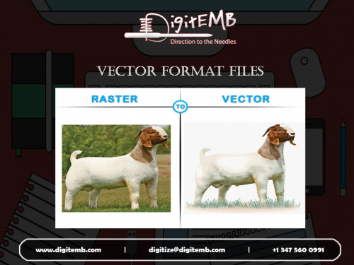 Vector Format Files'