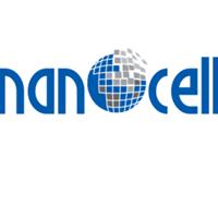 Company Logo For NanoCell Networks Pvt Ltd'