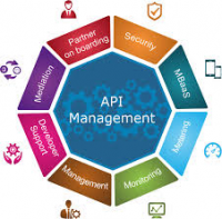 API Management Platforms