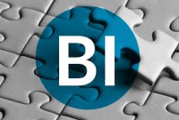 Business Intelligence (BI) And Analytics Platforms