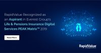 RapidValue Featured as an Aspirant in Everest Group&rsqu
