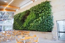 Green Wall Market'