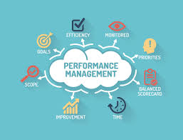 Performance Management Systems'