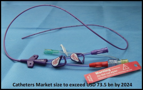 Global Catheters Market size to exceed USD 73.5 bn by 2024'