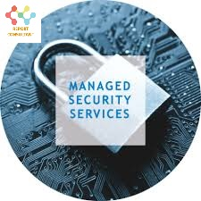 Managed Security Services'