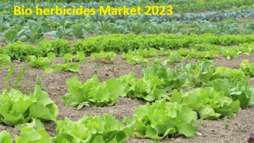 Global Bio herbicides -market demand,growth & opport'