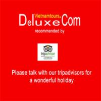 Deluxe Vietnam Tours Logo