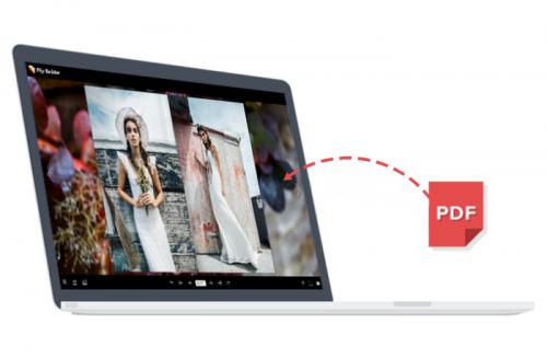PDF to flash page flip'