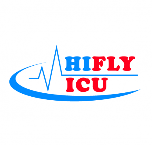 Company Logo For Hifly ICU Air Ambulance Service'