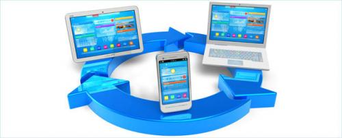 Behavioral Health Software Market'