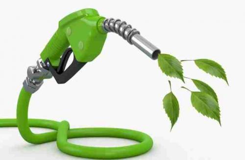 BiofuelMarket Report'