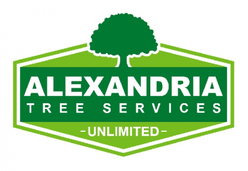 Company Logo For Alexandria Trees & Stumps'