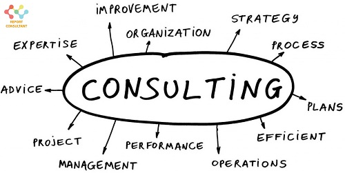 Consulting Services'