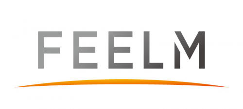 Company Logo For FEELM'
