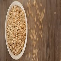 Rice Protein Market'