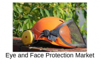 Appropriate Study of Global Eye and Face Protection Market F
