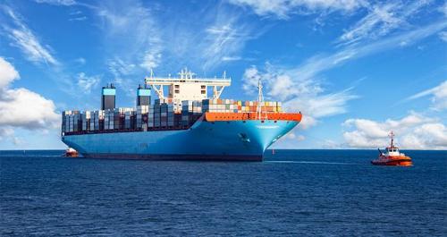 Perishable Goods Sea Transportation Market'