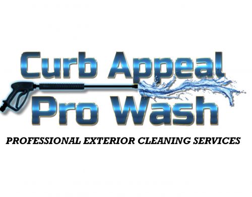 Company Logo For Curb Appeal Pro Wash'