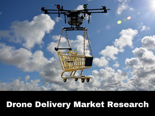 Drone Delivery Market'