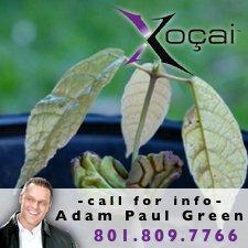 Adam Paul Green-Xocai'