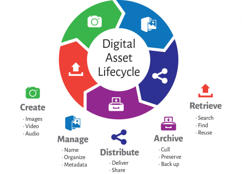 Digital Asset Management Software'
