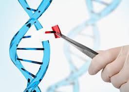 Genetic Engineering Market'