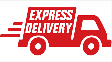 Express Delivery Market'