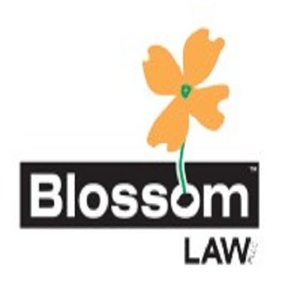 Company Logo For Rashad Blossom'